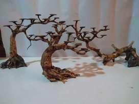 Hardscape bonsay aquarium ikan hias