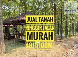 Jual kavling surat SHM di Bogor bonus pohon jati emas 96jt 200m²