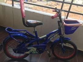 Kids BSA cycle BSA