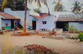 Perfect land with free house at gopal patti