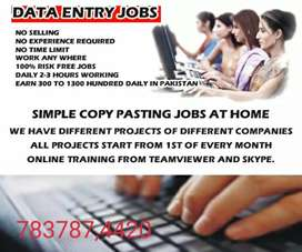wanted genuine Part time home based data