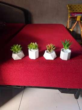 Kaktus mini cactus artificial pot mini