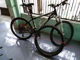 jual sepeda gunung polygon xtrada 04