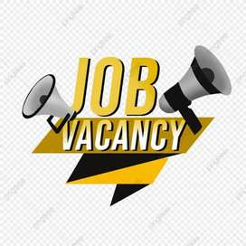 urgent requirement of field executive or field boy