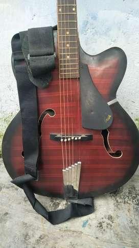 Hobner Guitar, Acoustic Narrow Body