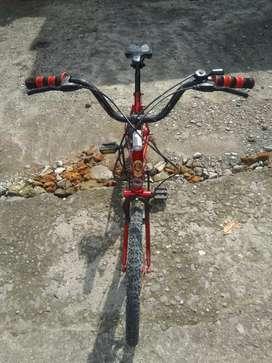 Sepeda Minion size 20 Phoenix sudah draier