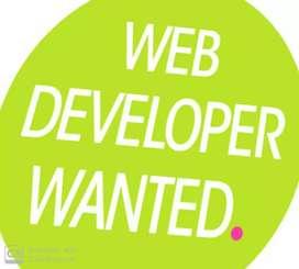 Required Website Developers