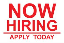 COMPANY IS LOOKING FOR SALES OFFICER