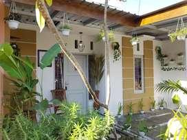 Rumah Murah Bonus Furnish Dekat Ringroad Jl Imogiri Timur
