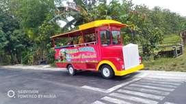 odong angkutan kereta wisata pancingan elektrik kering DSY