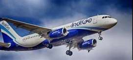 All staff indigo airlines recruitment for Helper, Loader, Security Sup