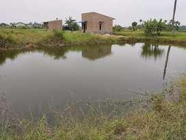 Di jual Tanah beserta Kolam, ukuran tanah 8x13,5m, ukuran kolam 20x30m