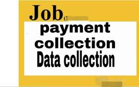Payment collection,data collection job for fresher and experienced