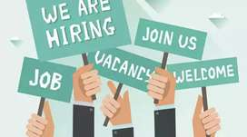 Required Male and Female Staff for Office Work