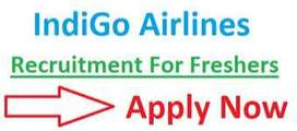 we are hiring for ground staff,air ticketing