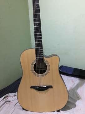 Ariya guitar