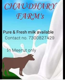 Chaudhary farm