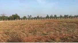 5 acres 18 guntas farm available for sale in devanahalli
