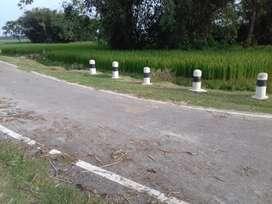 बिहार रानिपत्रा पूर्णिया ऑन रोड जमीन सेल में।