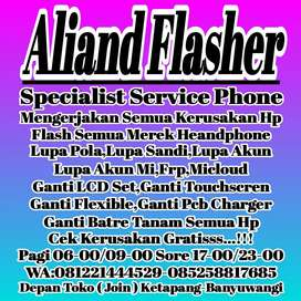 Specialist Service Phonsel