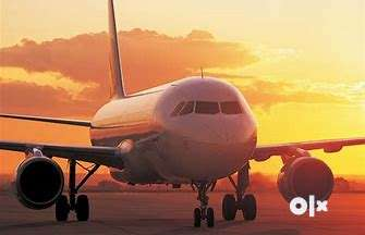 Indigo Airlines Job Opened @ CCE , Cabin Crew, Luggage Dept. , Front D 0
