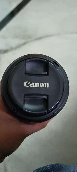 Canon 55-250 efs stm ii lens