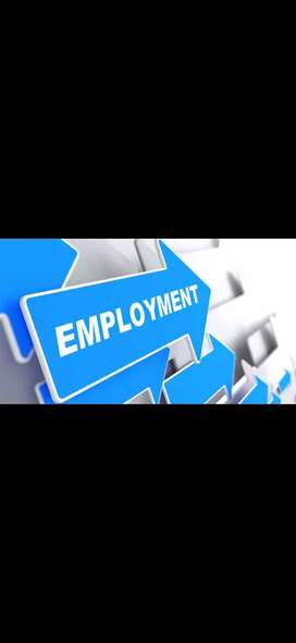 Job's for all sectors field job,inhouse. companies, banking etc