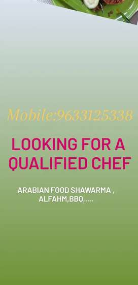 Looking for qualified Arabian chef