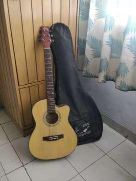 Acoustic Guitar (Ashton) | Best Sound