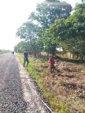 Tanah tambak pinggir jalan utama