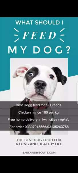 Dog feed for sale..