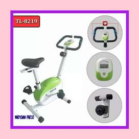 sepeda statis magnetic bike magnetik TL-8219