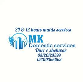 We are providing Extra ordinary Satisfactory Domestic staff