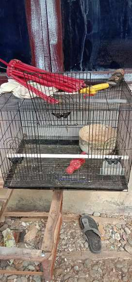 Jual kandang love bird