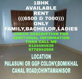 1Bhk House Rent ((6000 & 6500 & 7000)) Near Palasuni To Chintamanisor