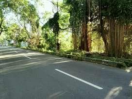 Tanah Pekarangan Cocok Untuk Hotel / Apartemen Dekat Ambarukmo Plaza