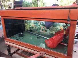 Aquarium gak di pakai