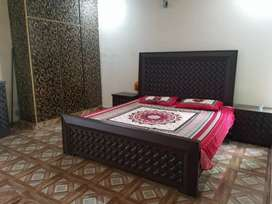 Only for Male single room in 11 Marla House