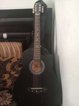 Guitar with cover and picks