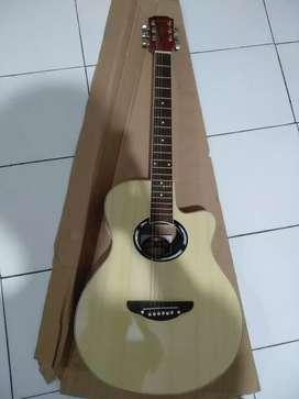Gitar akustik kembali