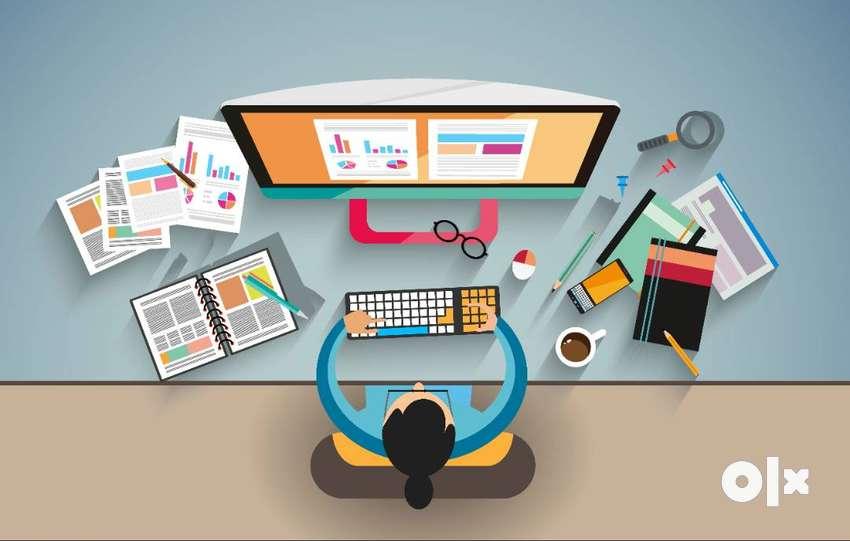 Website designer, content writer, SEO , articles writer,