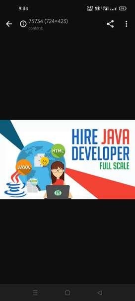 Java Developer