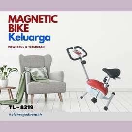 sepeda statis magnetik bike TL-8219 alat fitnes D-238
