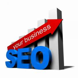 SEO expert freelancer available