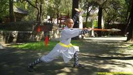 Kung-fu Nellore Martial arts Indian Physical Fitness Activity