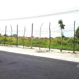 DIJUAL Tanah Luas Nol Jalan Raya di Sememi Surabaya