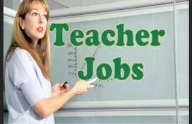 Required teachers for job in schools