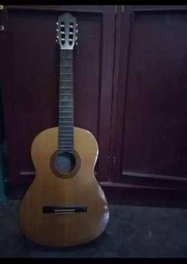 gitar clasick C315