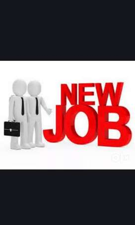 Good job oppurtunities jobs at all MNC companies and other companies