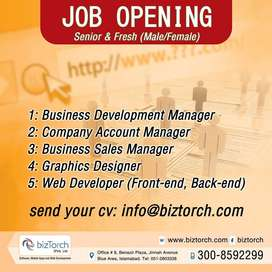 Marketing & Sales Manager